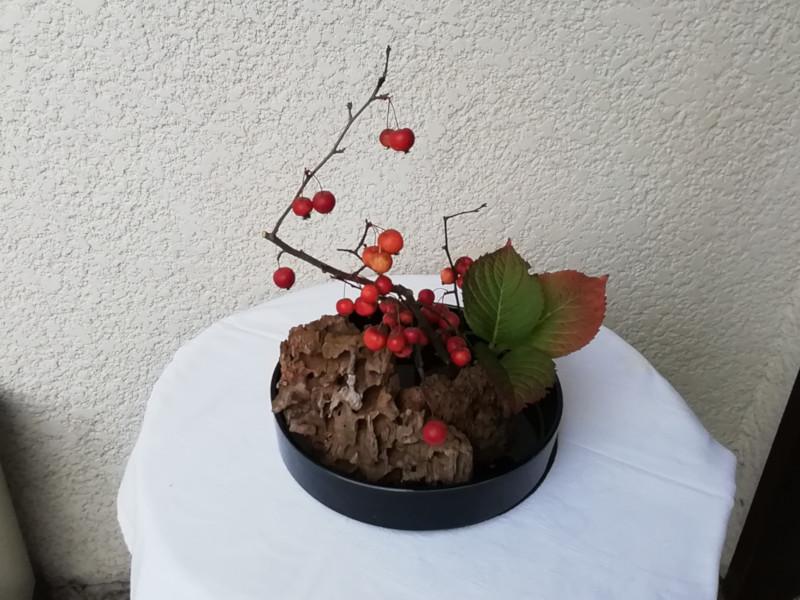 Compo florale  ikebana